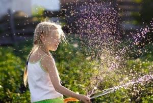 Насосы водяные для полива огорода: их разновидность и особенности