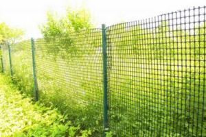 Сетка полимерная садовая