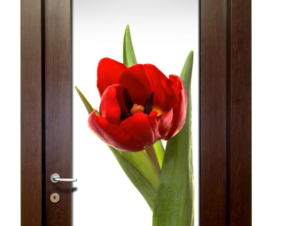 Лаконичный дизайн межкомнатной двери