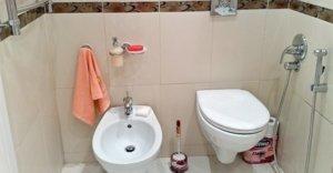 Гигиенический душ для биде