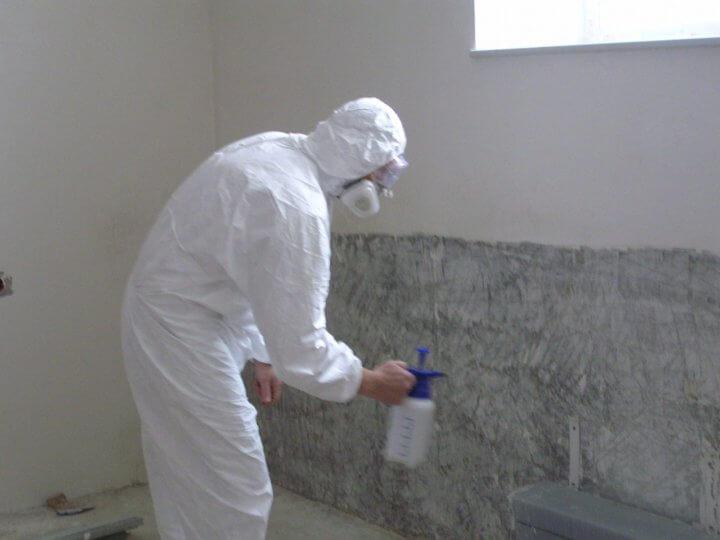 Профилактика появления грибка на стенах