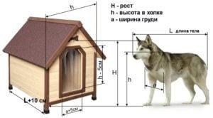 Габариты домика, как снять мерки с собаки