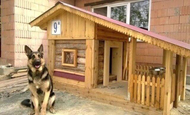 Настоящий домик для любимой собаки