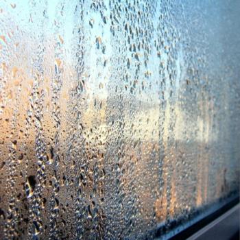 Как убрать влажность в квартире: причины и последствия