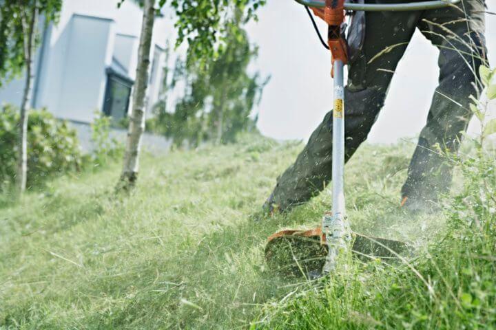 Бензокоса: как выбрать агрегат для стрижки газонов, удаления сорняков