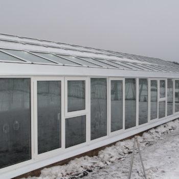 Теплица из пластиковых окон: с овощами круглый год