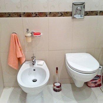 Выбираем смеситель для биде с гигиеническим душем