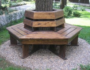 Оригинальная скамейка вокруг дерева
